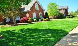 Norman Landscaping designs